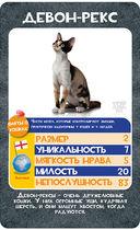 Козырные карты. Кошки — фото, картинка — 3