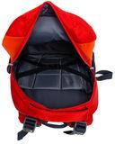 Рюкзак П222 (24 л; оранжевый) — фото, картинка — 8